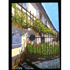 Picture-Ancient vine