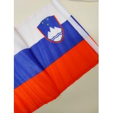 Slovenian flag - medium